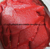 2018 Fresh Crop Aseptic Bag Packing Tomato Paste