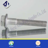 Dacromet Plated Hex Flange Bolt and Nut for Aoto Fastener