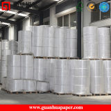 ISO9001 POS Use Thermal Paper Jumbo Rolls