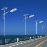50W Warranty Waterproof High Performance Price Solar LED Street Garden Light (CS-TYFJ-50)