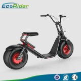 2017 Fashion Citycoco Scooter, 2 Wheel Electric Scooter