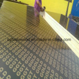 Film Faced Shuttering Ply Boards with Logo