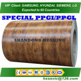 Prepainted Galvanized Steel Coil Zinc Steel Coil Color Coated Sheets