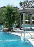 Wholesale Pipeless Portable Acrilic Swimming Pool Water Filter Pk8025