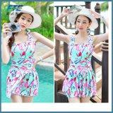 One-Piece Dress Fashion Bikini Swimwear Beach Wear for Asian Girl