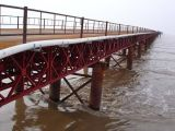 Designed Galvanized Steel Prefabricated Bridge