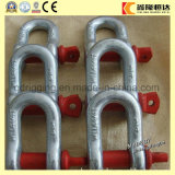 Bow Type Screw Pin Small Stainless Steel Shackle