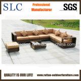 Rattan Garden Furniture/Outdoor Sofa Bed/Attractive Sofa (SC-B8915)