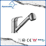 Chromed Kitchen Faucet with Stainless Steel Long Spout (AF1965-5A)