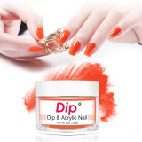 Steps How to Use Acrylic DIP Method DIP Nails Art 1000 Stocks Colors