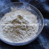 Fccv F80/F200 Xanthan Gum Powder CAS 11138-66-2 Bulk Price
