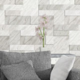 Good One Ceramic Wall Tiles 300X900mm