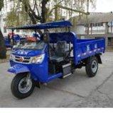 Diesel Chinese Open Cargo Motorized 3-Wheel Motorcycle
