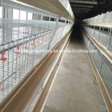 Low Price Professional Design Broiler Cage System