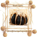 Professional Export Whole Black Garlic