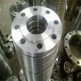 Price High Temperature Forged 304 Stainless Steel Pipe Fitting Flange