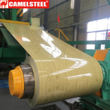 China Color Coated Dx51d+Z /SGCC/CGCC Steel Coil