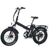 2018 Beite Fat Tire Electric Bike