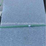 China Stone Tile Countertop Granite Slab (GS-ST1)