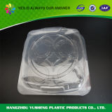 Disposable Plastic Food Container, Plastic Container