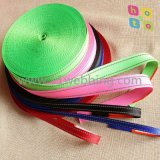 25mm Flat Nylon Webbing for Dog Leashes and Collars