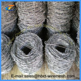 Galvanized Two Strand Barbed Wire