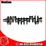 The Reasonable Price Cummins Parts Crankshaft 3965010