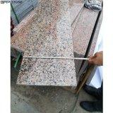 Building Material Granite for Slab/Countertop/Tile/Step Tiles