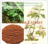 Flagship Products Sweet Tea Extract/Rubusoside & Polyphenol
