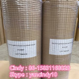 Welded Steel Wire Mesh Roll Galvanized/ PVC Coated