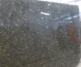 Polished Butterfly Green Granite for Stone Floor Tiles