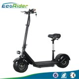 Ecorider Fat Tire off Road Foldable Citycoco Electric Scooter with Seat for Adults