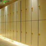 Jialifu Hotel Living Room Furniture Locker Cabinets