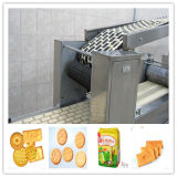 Chinese Supplier Automatic Biscuit Production Line