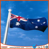 Hot Sale Durable Flagpole with Customed Flag