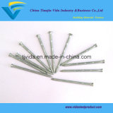 Concrete Nails with Bamboo Shank