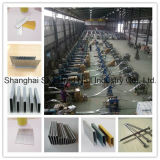 Exporting Standard Wholesale Polished Common Nails