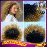 Afro Kinky Human Hair Extension Ombre Human Hair Extension