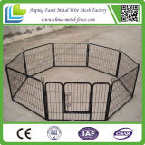 Metal Powder-Coated Dog Cage Great Quality Dog Crate Wholesale