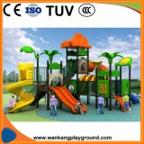 China Best Children Outdoor Playground Equipment Prices (WK-A18124)