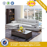 Fashion Sofa Modern Living Room Wooden Sofa (UL-NSC204)