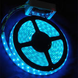 Wholesale Waterproof RGBW SMD LED Flexible Strip Rope Light for Decoration