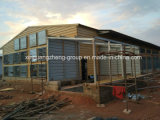 Semi-Closed Steel Structure Chicken House for Layer (egg chicken)