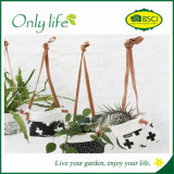 Onlylife Factory Direct Selling Eco-Friendly Fabric Planter with Different Design