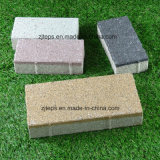 Porous/Water Permeable Paving Brick for Driveway/Foot Way