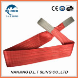 5 Tons Polyester Double Ply Webbing Sling for Lifting GS Ce Certified