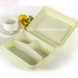 PP Green Folding Plastic Packaging Lunch Box