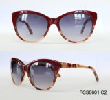 Shiny Finished Premium Quality Acetate Sunglasses for Women