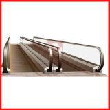 Shopping Mall Auto Indoor/Outdoor Moving Sidewalk Walk with High Quality