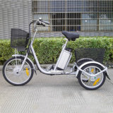 3 Wheel Electric Tricycle/ Electric Bike/ Ebike